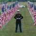 Healing Field in Murfreesboro Memorial Day Weekend